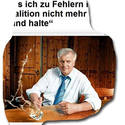 Foto: Seehofer in BILD
