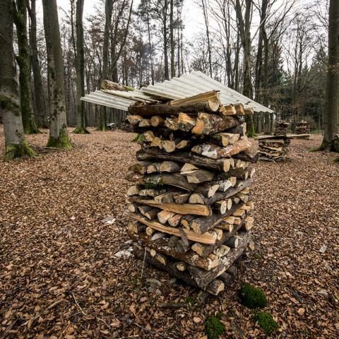 Wenn Architekten Holz stapeln - Foto: Schindelbeck