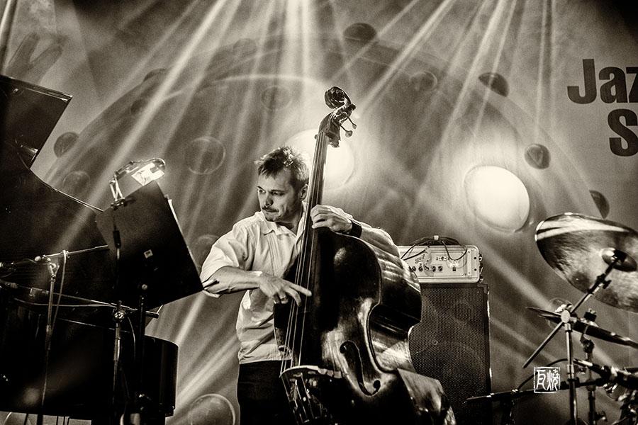 Trevor Dunn - Foto Frank Schindelbeck